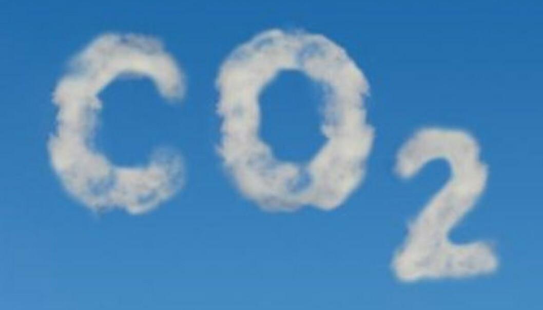 Uvitenskapelige om CO2-kretsløpet