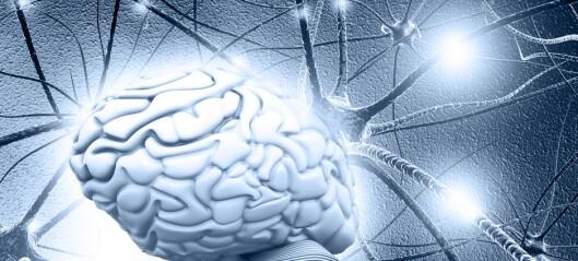 Hvordan kan forskerne bruke teknologi til å skjønne mer om hjernesykdommer?