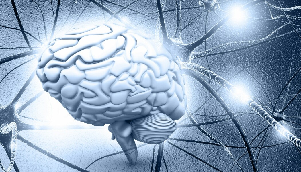 De samme matematiske reglene gjelder både inni hjernen og ute i verdensrommet, forklarer Gaute T. Einevoll.