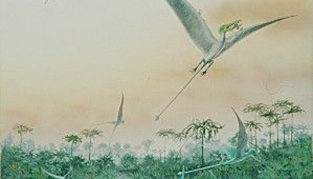 """""""Bare fire prosent av alle utdødde arter ble drept i katastrofer."""""""