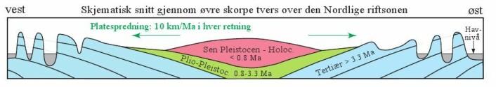 Figur 6: Skjematisk snitt i retning VNV-ØSØ som viser høydevariasjoner og lagstilling. Den vulkanske pålagringen i riftsonene skaper et vulkansk høyland, særlig i den indre delen av Island nær Vatnajökull, og konstant innsynkning av dette høylandet. Dette fører til nedbøyning av basaltlagene øst og vest for riftsonen. De Tertiære lavaplatåene flyter høyt på grunn av lav tetthet som følge av dyp glasial innskjæring med daler og fjorder. De lavestliggende områdene på Island er de Plio-Pleistocene områdene. Klikk her for større versjon.