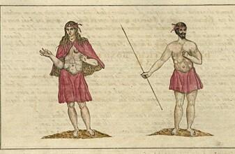 Overraskende svar på mysteriet om urfolket på Kanariøyene