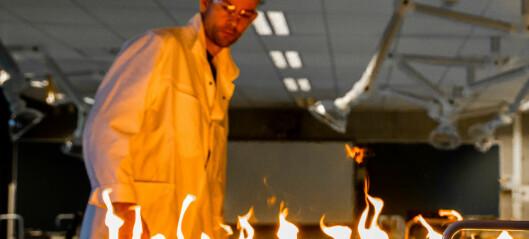 1. desember: Rubens flammerøyr