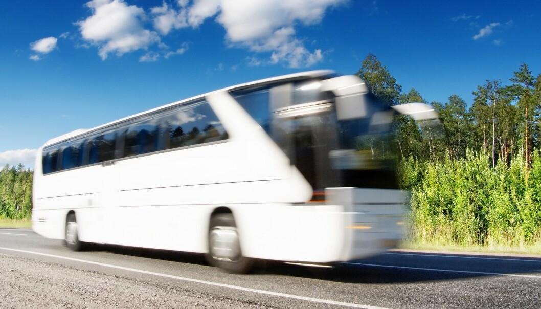 Hvite busser og Aktive  Fredsreiser arrangerer reiser for skoleelever til nazistenes tidligere konsentrasjonsleirer. Colourbox
