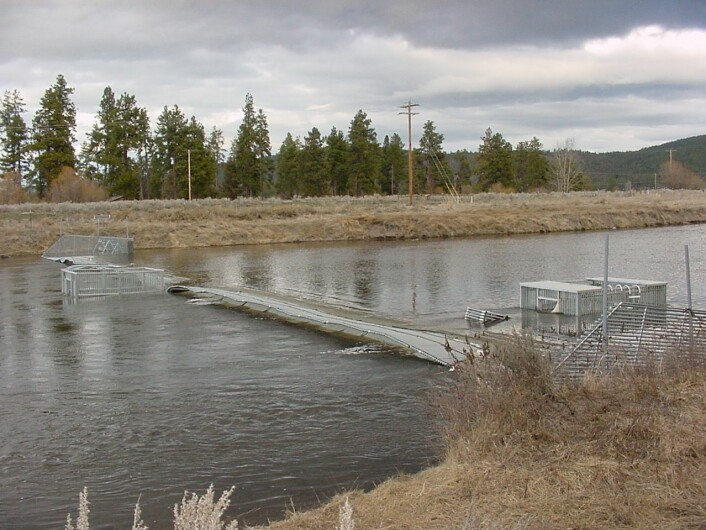 Resistance board weir system i drift i California. (Foto: (Utlånt av Joe Merz, Cramer Fish Science, California))