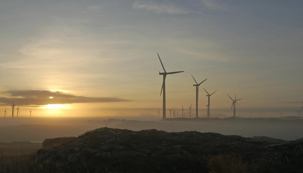 – Vi bør ta høyde for at kollisjoner med vindmøllenes rotorblader kan påvirke insekter negativt, sier NINA-forsker Jens Åström.
