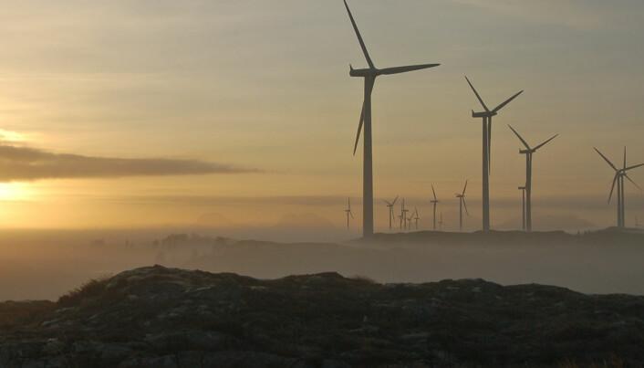 Forskere vil undersøke hvordan vindkraft påvirker insekter