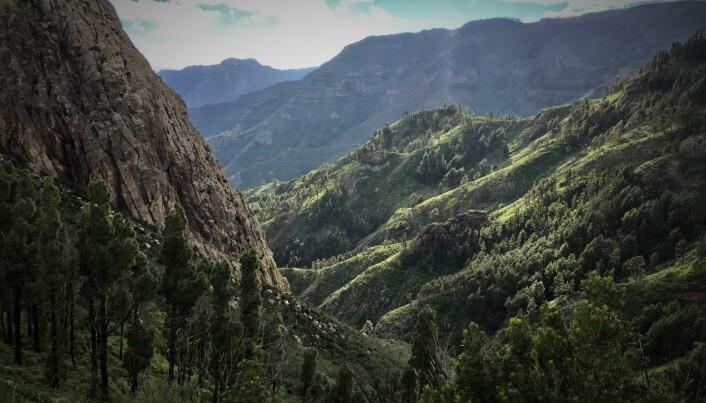 Plystrespråket utviklet guanchene på La Gomera for å kommunisere på tvers av de dype dalene på den vakre øya.