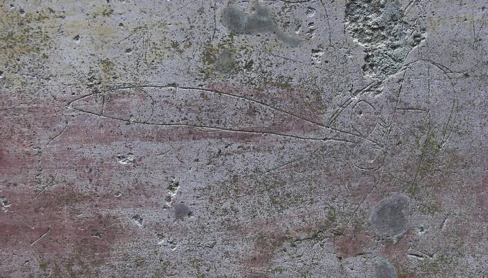 Denne graffitien fra antikkens Pompeii skal vise en mann med abnormt stort understell. Disse tegningene fungerte som ondt-avvergende symboler, ifølge forsker.
