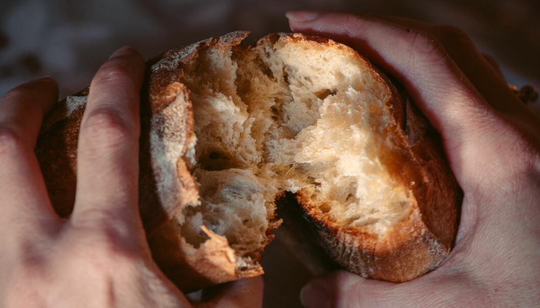 Forsker tror gluten kan forårsake migrene