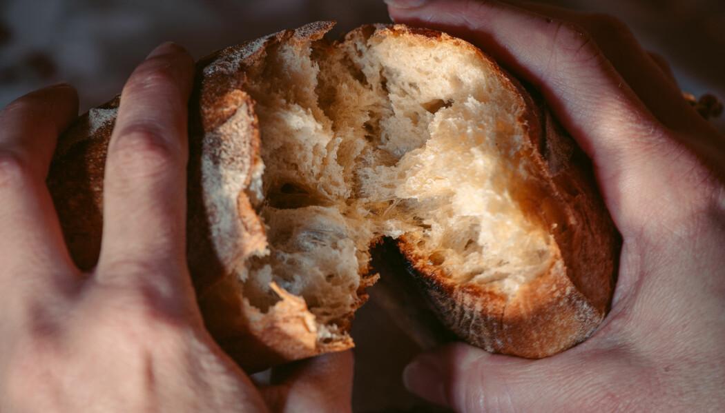 Gluten, en naturlig bestanddel i blant annet hvete, forårsaker reaksjoner i kroppen som kanskje kan kobles til migreneanfall, tror forsker.