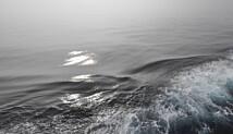 Havet er fremdeles et effektivt karbonsluk