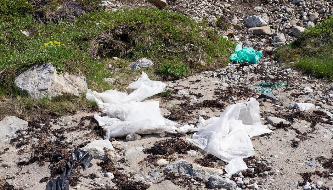 Det er dessverre sant at man kan finne plast selv på de fjerneste stedene på planeten. Men hva med mikroplast?