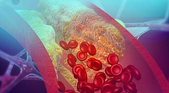 Kolesterolkrystaller kan aktivere blodpropp