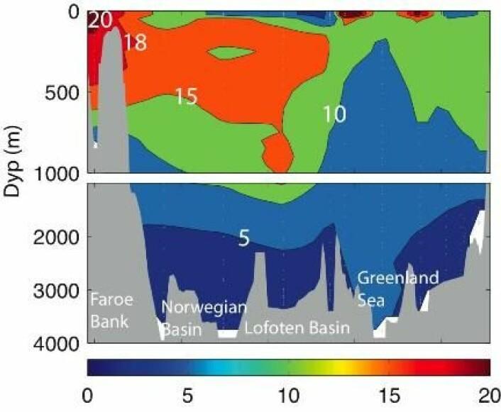 """""""Figur 2. Økning av innholdet av oppløst uorganisk karbon (i mmol kg-1) i De nordiske hav fra 1981 til 2002/2003 (Olsen m. fl. 2006), korrigert for endringer i temperatur, salt og næringsalter. Den relativt beskjedne økningen i overflaten i Lofotenbassenget og deler av Grønlandshavet skyldes innblanding av polare vannmasser som har tatt opp mindre karbon enn vann fra Atlanterhavet (Atlanterhavsvann sees som karbon-beriket vann som strømmer nordøver via Færøybanken mot Norskehavet)."""""""