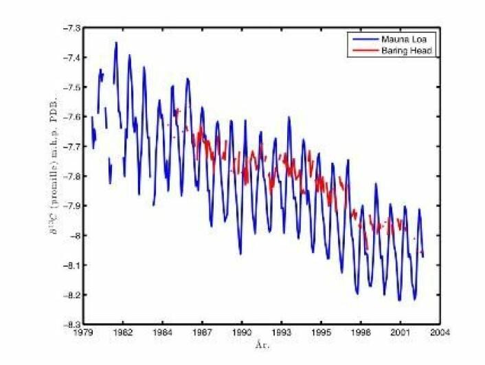 """""""Figur 3. Månedlige målinger av ð13C fra Mauna Loa, Hawaii (blå farge) og Baring Head, New Zealand (rød farge). Som for atmosfærens CO2 økning i figur 1 viser også målinger fra ulike stasjoner rundt om på kloden samme trend i ð13C (Keeling m. fl. 2005). """""""