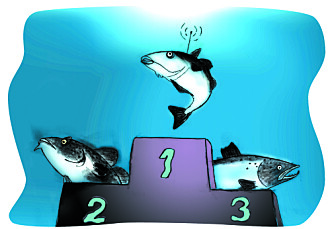 Illustrasjon til Gemini-artikkelen fra 2001: «Seien er best som robotfisk fordi den er lettest å dressere. Torsken er sta og lunefull, og laksen er dum.»