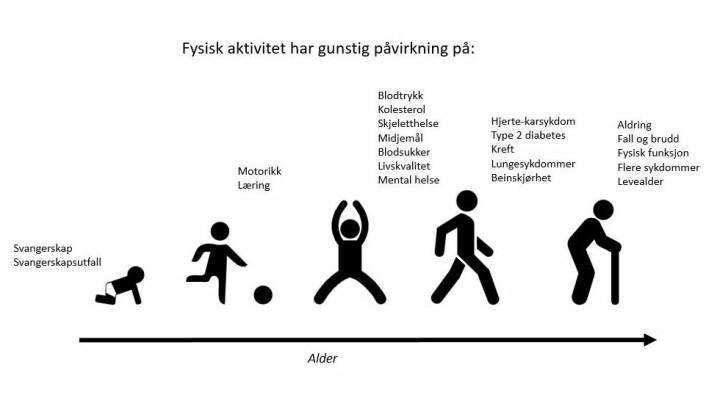 Slik kan fysisk aktivitet påvirke oss i ulike aldre.