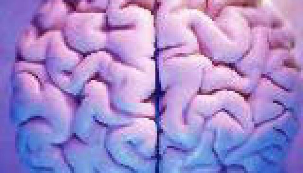 Simulerer hjernen i superdatamaskin