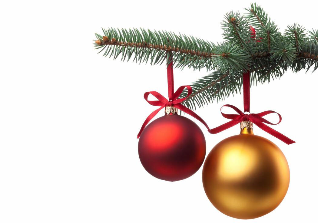Lukta av juletre er for mange en viktig del av julestemningen.