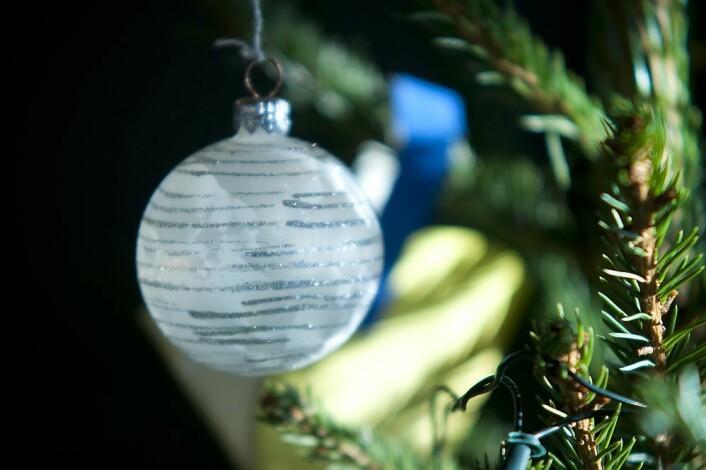 1,9 millioner juletrær tas med inn fra de dype skoger til de norske stuer.
