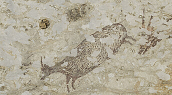 Verdens eldste hulemalerier laget av «moderne mennesker» er funnet, ifølge ny studie
