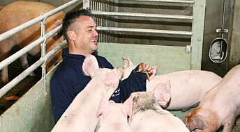 Torv i bingen gir glade griser