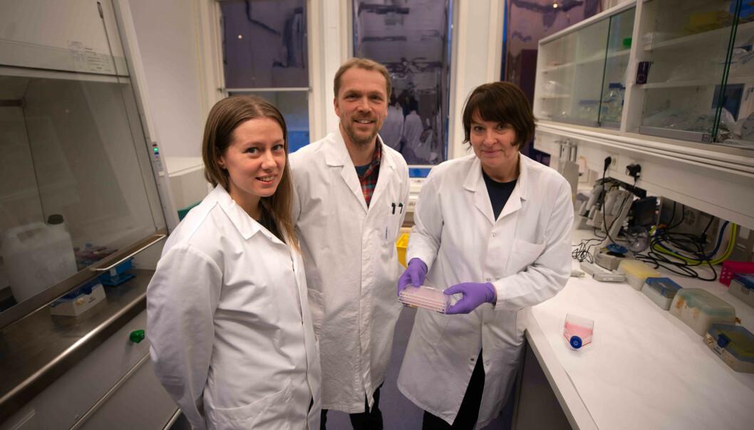 Forskere mener at oppdagelsen har potensial til å bli et legemiddel i fremtiden. Her er Kine Østnes Hansen, Espen Hansen og Jeanette Hammer Andersen.