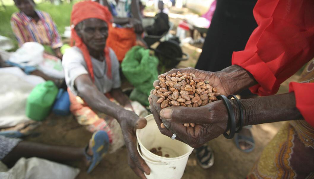 I 2009 var Zimbabwe rammet av en katastrofal tørke og økonomisk kollaps. Det førte til alvorlig sult og feilernæring blant store deler av befolkningen. Her fra et distribusjonssenter i Chirumhanzi 250 kilometer sør for hovedstaden Harare.