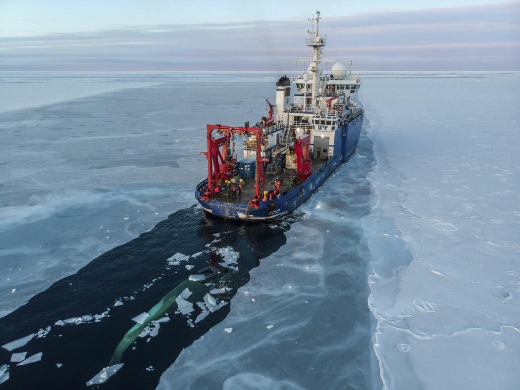 NOAA melder at havisen både i Arktis og Antarktis er redusert til det nest laveste nivået som er registrert, kun overgått av november 2016. Her ser du det amerikanske forskningsskipet Sikuliaq i isen nord for Alaska.