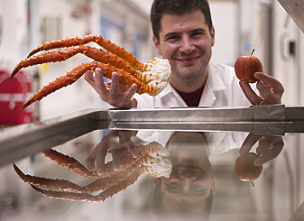 Hva har krabber til felles med frukt?