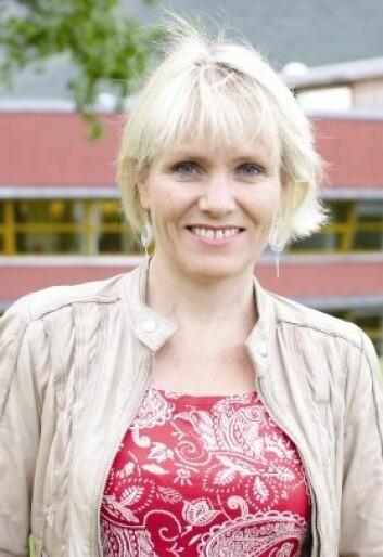 Siv M. Gamlem, jobber til daglig ved Avdeling for humanistiske fag og lærerutdanning ved Høgskolen i Volda. (Foto: Microstock)