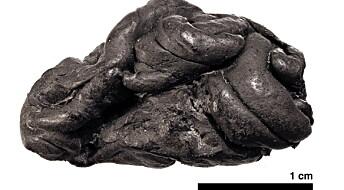 Mørkhudet, blåøyd jente tygde denne tyggisen for 5700 år siden