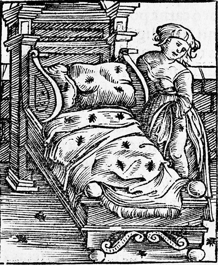 Veggdyr var ikke vanlig i det kalde og våte klimaet her i nordvest-Europa, men man kan se på denne illustrasjonen fra Tyskland på 1500-tallet at de heller ikke lenger sør satte pris på selskapet.