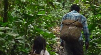 Barn i regnskogen og vestlige unger brukte like mye energi