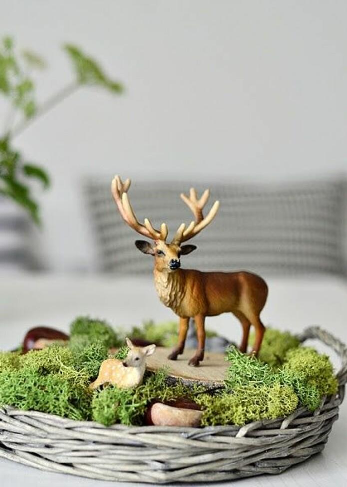 Er du ein av dei mange som gjerne pyntar til jul med det du finn ute i naturen? Du er ikkje åleine.