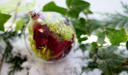 Kvitkrull – frå ujålete julepynt til trendy tavler