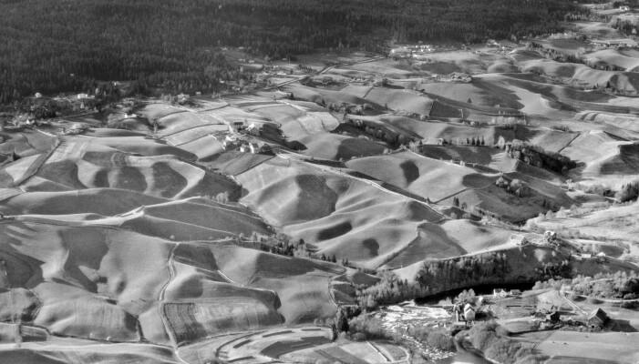 Ravinelandskap før den storstilte bakkeplaneringen - Nannestad i 1950. Området er i dag tilnærmet flatt. Livet ble enklere for bønder og utbyggere, men vi mistet noe på veien. Naturtypen ravine er i dag nesten utryddet og står dermed på Artsdatabankens rødliste.