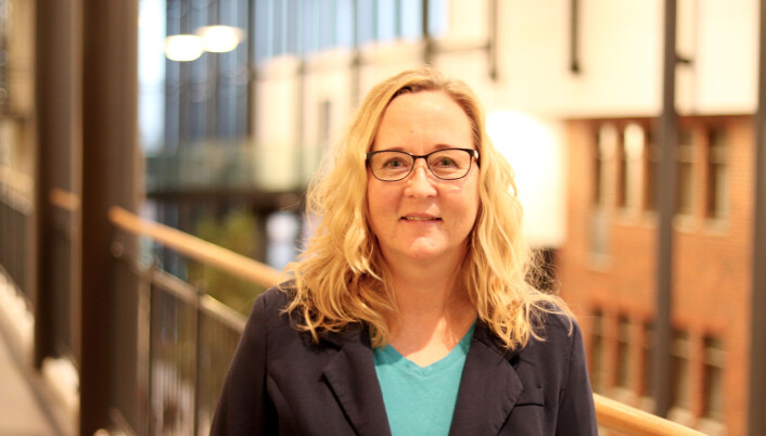 Associate professor and researcher Siri Håvås Haugland researches possible negative consequences of parents and drunkenness.