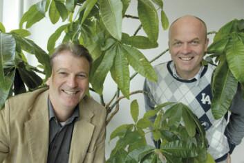 Professor Trond Randøy (t.v.) og postdoktor Roy Mersland fra UiA. (Foto: Sidsel Jørgensen)