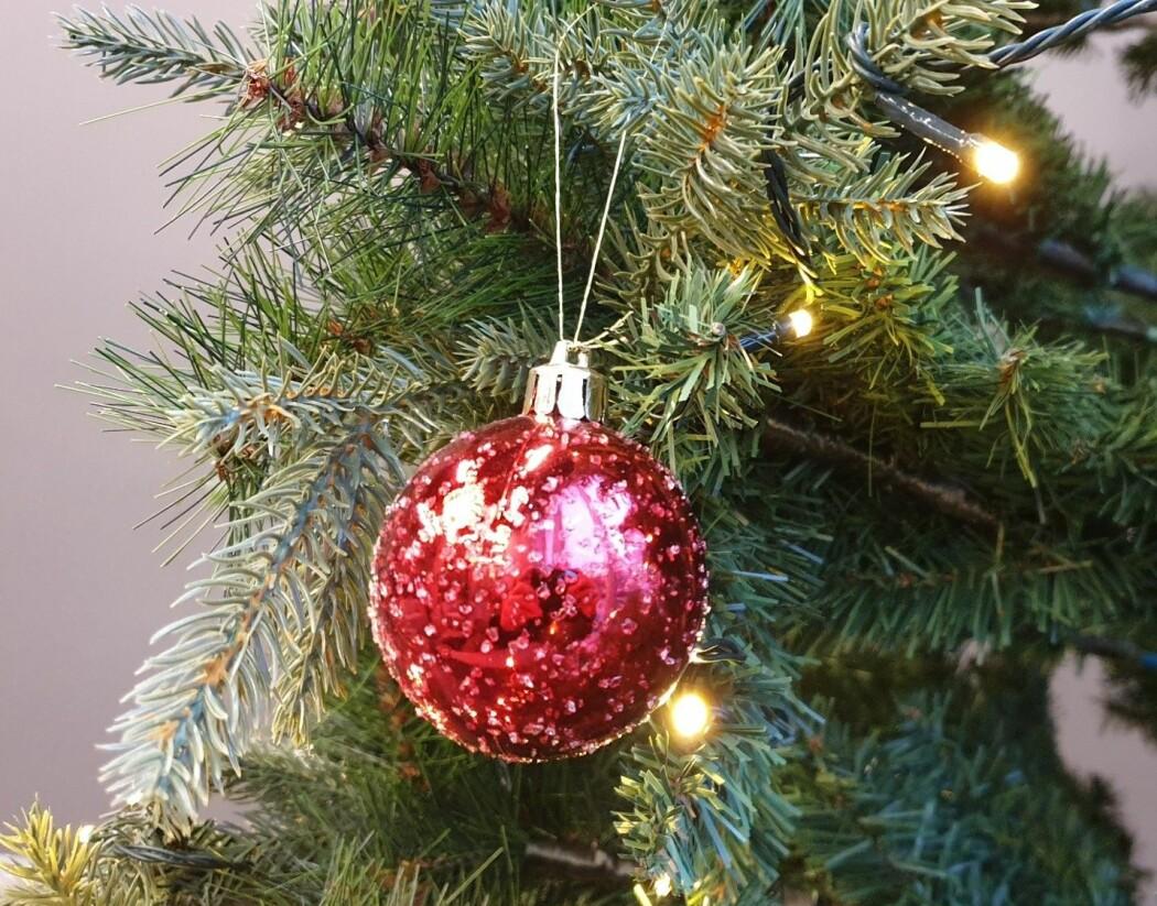 Hvilket juletre velger du? Gran, furu, edelgran – eller kanskje et grønt og glitrende plasttre som dette?