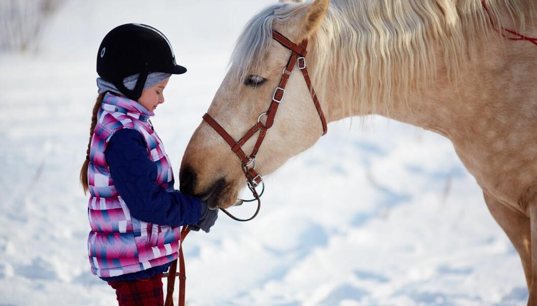 I verden er det over 60 millioner hester. Kanskje du kjenner én av dem?
