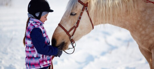 Ni ting du kanskje ikke vet om hester