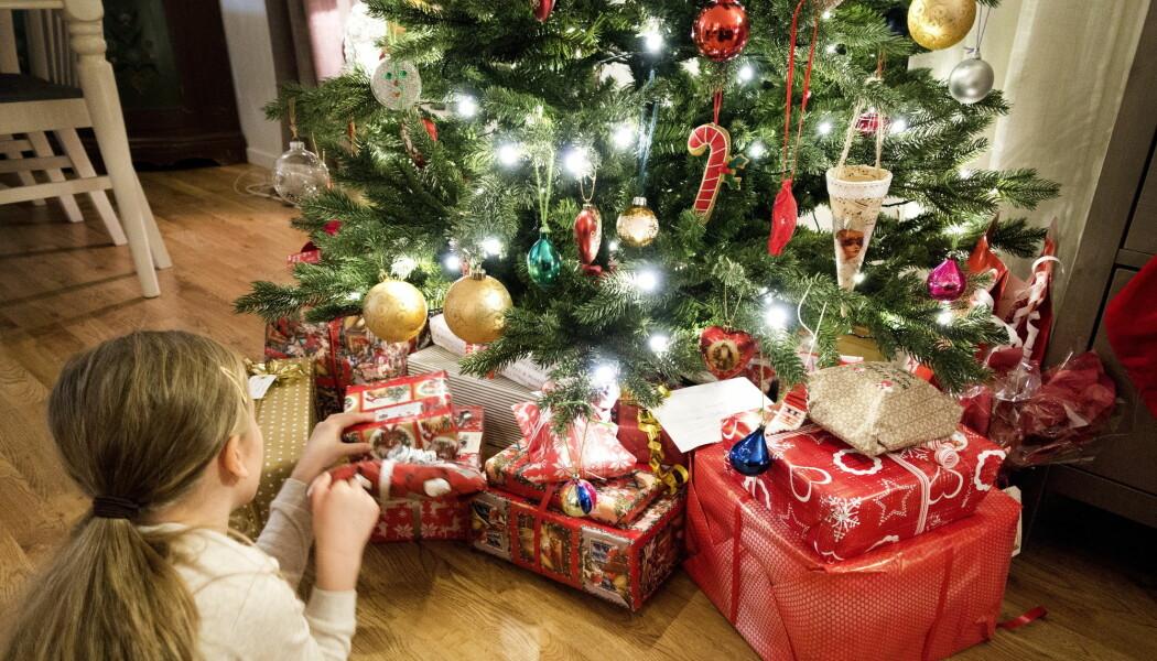 Tusenvis av bittesmå edderkopper, spretthaler, midd og bladlus våkner til live fra vinterdvalen i det juletreet kommer inn i stuen din.