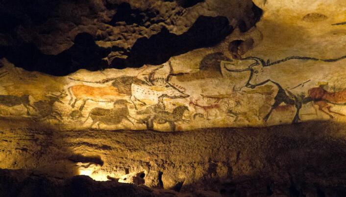 Mye bison og hest på steinalder-malerier i huler i Europa.
