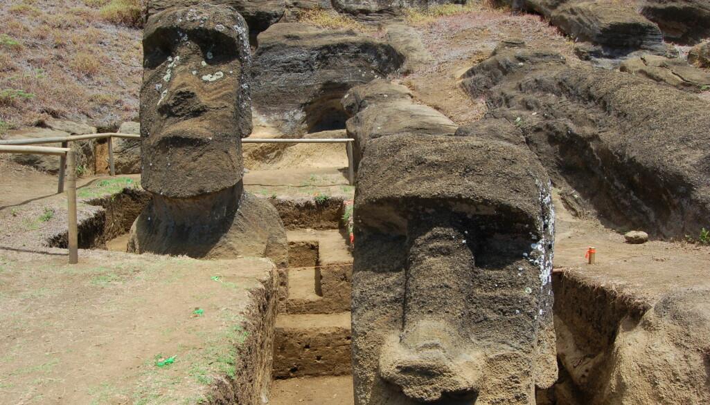 Forskere gravde frem disse statuene fra vulkankrateret Rano Raraku. De var trolig plassert der som en hyllest til fruktbarheten i området, tror arkeologer.