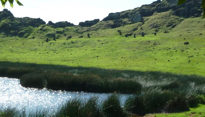 Innsiden av Rano Raraku med kratersjøen og noen uthogde statuer.