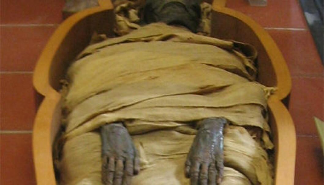 Egyptisk mumie. Joshua Sherurcij, Wikimedia Commons