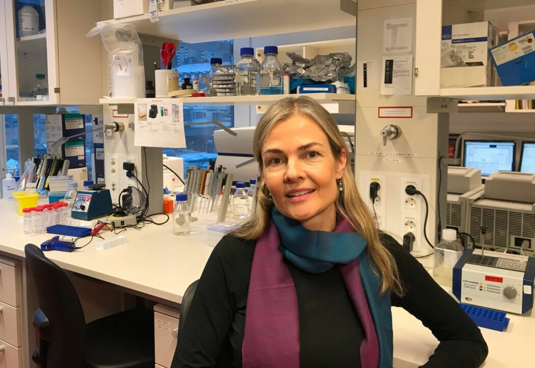 Professor Johanna Olweus har fått 20 millioner kroner til forskning på immunterapi.