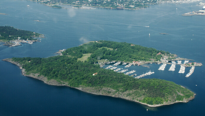 Slik ser Hovedøya ut i dag. Interneringsleirene lå på de to påne plassene i midten av bildet.